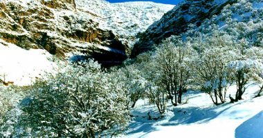 More information about Boraq Gorge