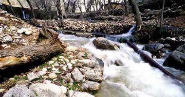 More information about Sarab Kangavar River