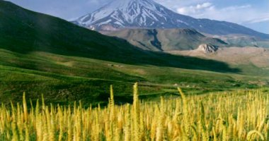 More information about Damavand Summit in Damavand