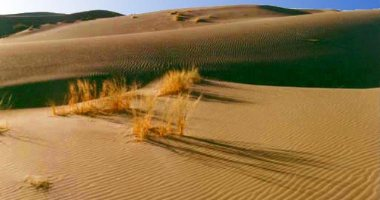 More information about Kavir National Park
