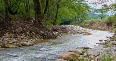 More information about Dahaneh River