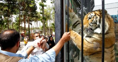 More information about Tehran Zoological Garden