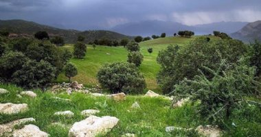 More information about Serkan Valley