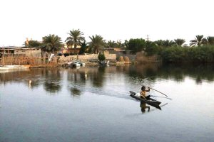 Shadegan Ponds