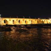 Ancient Bridge of Dezful - Khuzestan