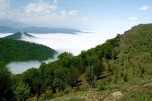 Abr Forest - Shahrud - Semnan Province