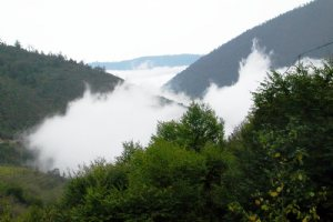 Javaher-deh Hyrcanian Forests